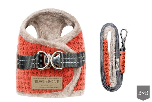Harness SOHO WINTER orange