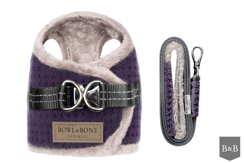 Harness SOHO WINTER PURPLE