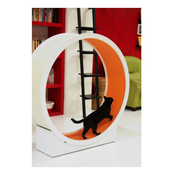CatWheel in Orange - Jolly and Bea's - 1
