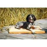 Honey Dog Mat - Jolly and Bea's - 4
