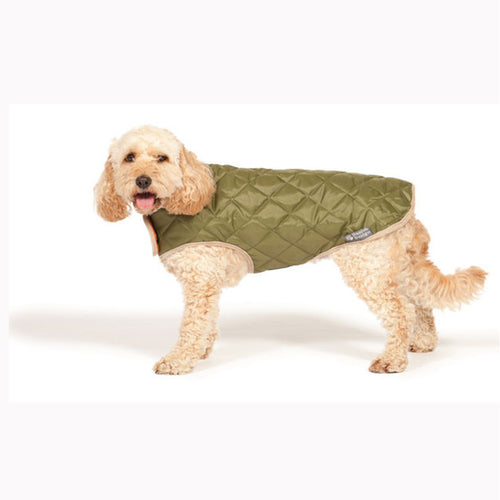 Green Quilted Dog Coat - Jolly and Bea's - 1