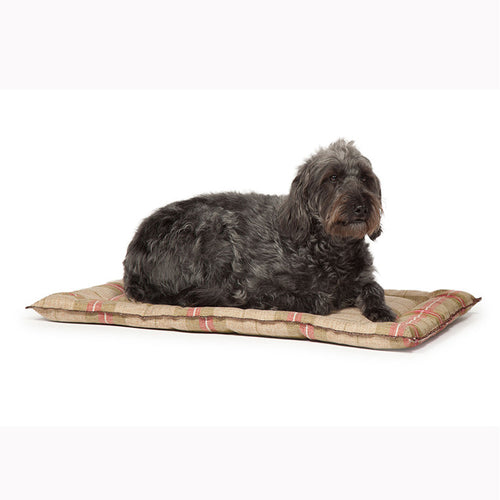 Newton Moss Dog Crate Mattress - Jolly and Bea's - 1