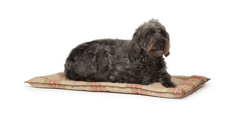Newton Moss Dog Crate Mattress - Jolly and Bea's - 2