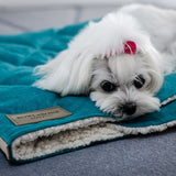 Dreamy Mint Dog Blanket - Jolly and Bea's - 2