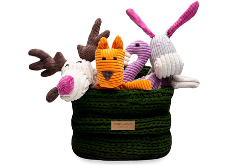 basket for dog toys RING green