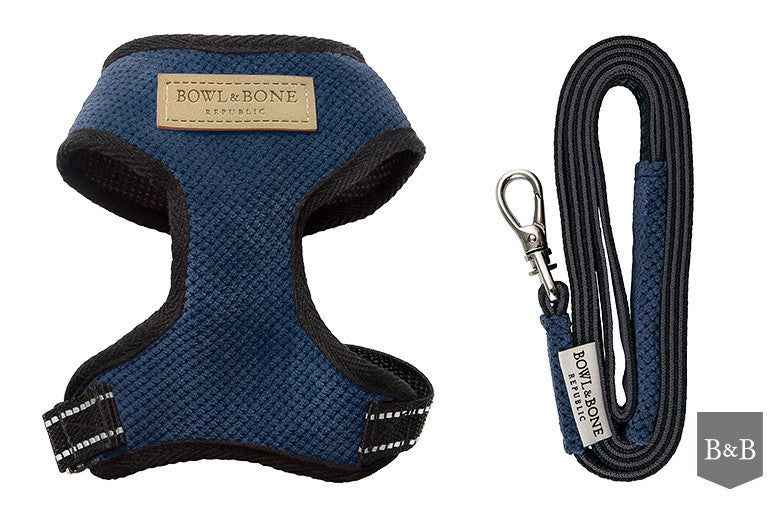 Blue Candy Dog Harness - Jolly and Bea's - 4
