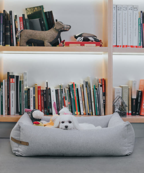 Grey Loft Dog Bed