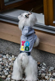 Grey YOLO Dog Hoodie - Jolly and Bea's - 3