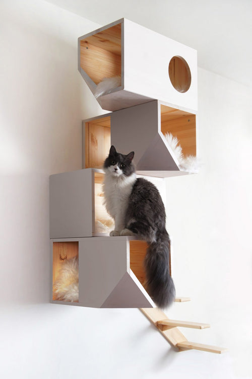 Catissa 4 storey cat house White