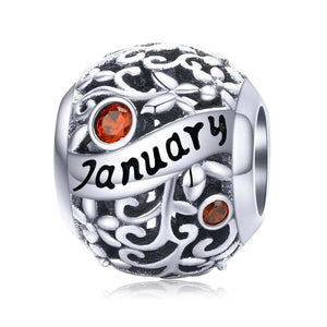 January -Birthstone Charms