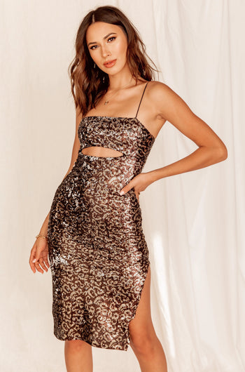 Celine Leopard Sequin Dress