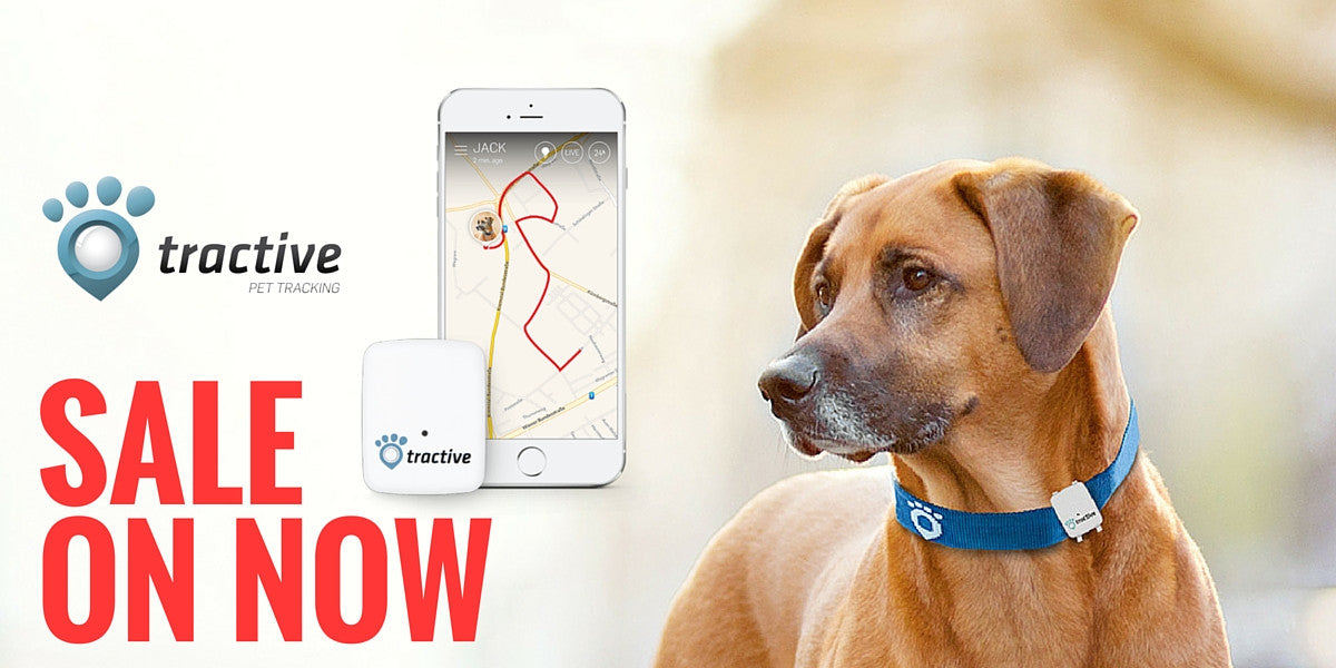 Tractive Pet Tracking
