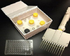 ELISA Kit for Eosinophil Chemotactic Factor (ECF) - Horse