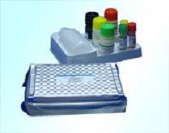 High Sensitive ELISA Kit for C Reactive Protein (CRP) - Rat