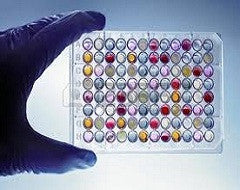 ELISA Kit for Agouti Related Protein (AGRP) - Human