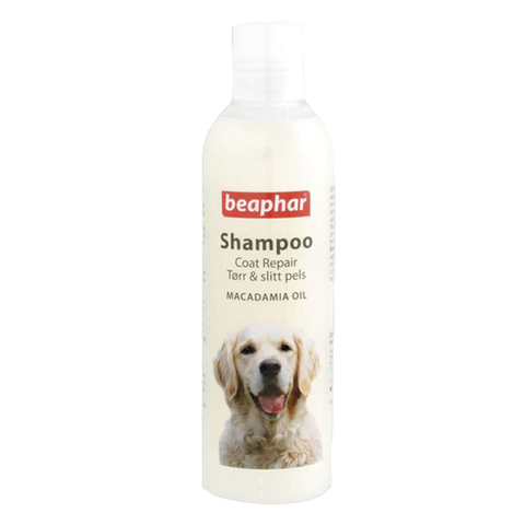 Shampoo coat repair 250ml BEA