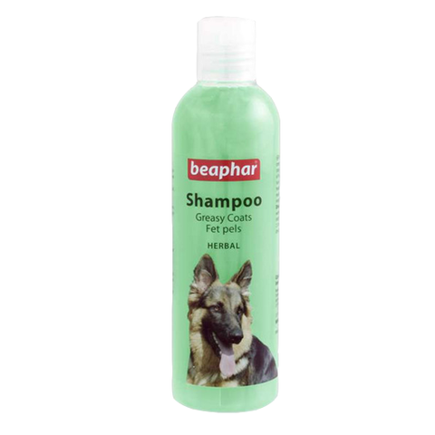 Shampoo greasy coat 250ml BEA
