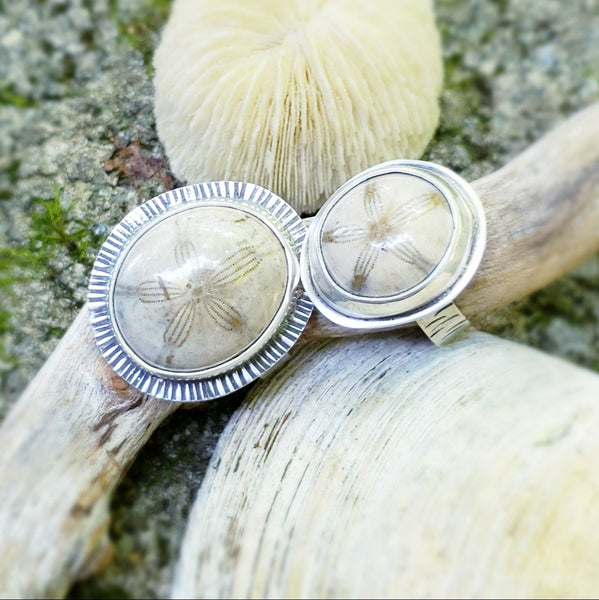 Fossilized Sand Dollar Rings in Sterling Silver Size 7.5 & 9