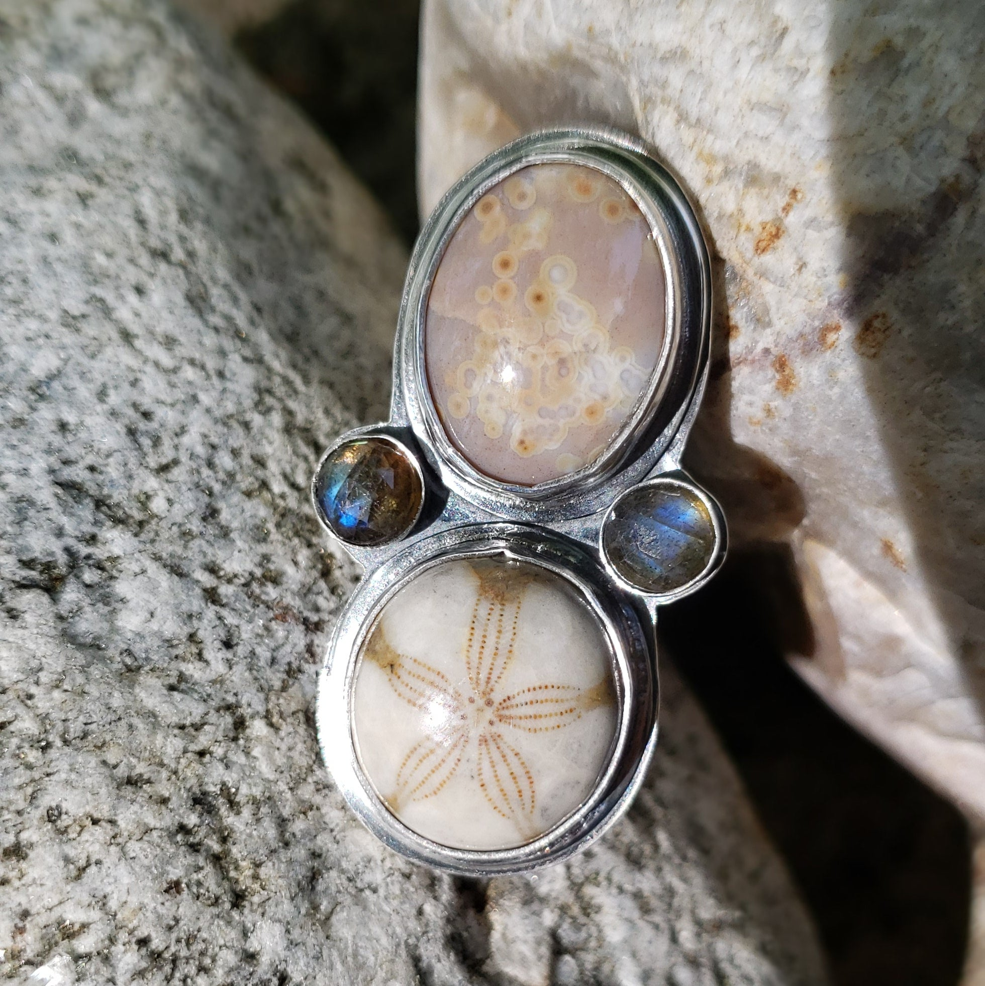 Fossilized Sand Dollar & Ocean Jasper Ring in Sterling Silver Size 6.5