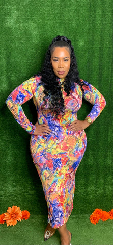 Rainbow Python Dress - Curvy