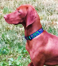 extra wide dog collars key west personalized handmade vizsala skye