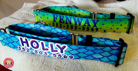 ocean-beach-fishing-dogcollar-tropical-hawaiian