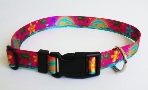 key west dolphin dog collar