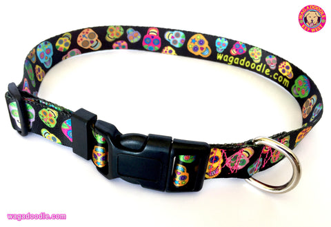 sugar skulls dog collar from Key West Artist