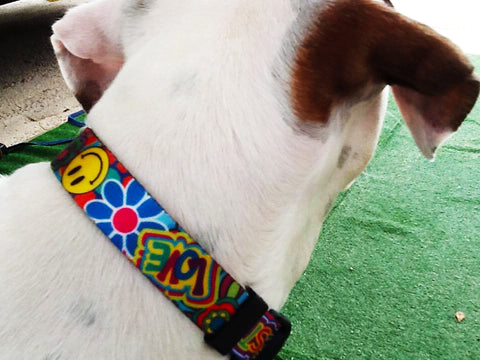 Peace love and Key West groovy hippie dog collar