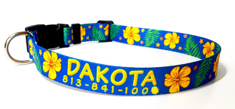 blue hawaiian dog collar hibiscus personalized