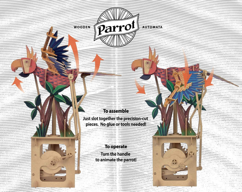 Clockwork Dreams Parrot Wood Automata-ModelShop-At Play Toys