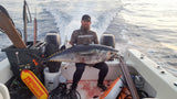 Dark Waters Tuna Bungee Taglines from Dark Waters - Red Triangle Spearfishing