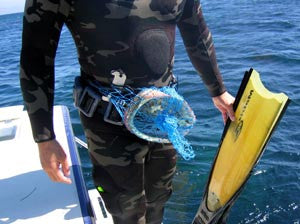 NHT Belt Bags Gear from NHT - Red Triangle Spearfishing