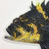 "China Rockfish 6.5"" Stickers from Amadeo - Red Triangle Spearfishing"