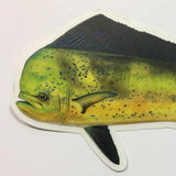 "Dorado 8.5"" Stickers from Amadeo - Red Triangle Spearfishing"