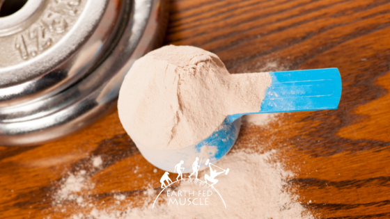 Whey Protein and Its Impact on Recovery