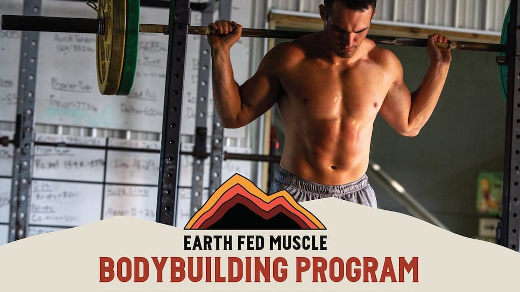 bodybuilding lifting program