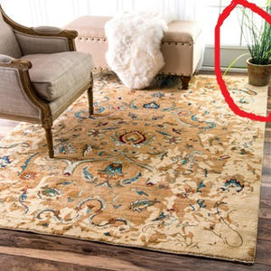 FLOWER POT ON HANDMADE RUGS?