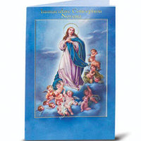 Immaculate Conception Novena and Prayers - Unique Catholic Gifts