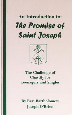 An Introduction to: The Promise of St. Joseph (Chastity) - Unique Catholic Gifts