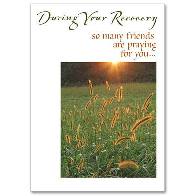 During Your Recovery Get Well Card