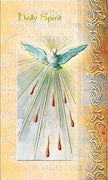 Biography Card of Holy Spirit - Unique Catholic Gifts