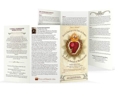 Larger Font Surrender Novena Trifold Holy Cards (NEW-Easy to read larger font, 8