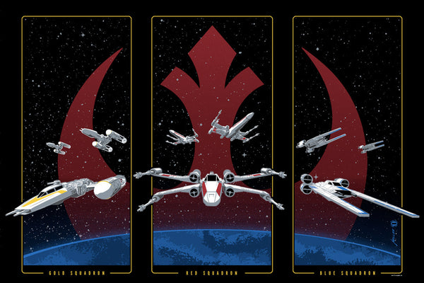 Rebel Squadrons by Brian Miller