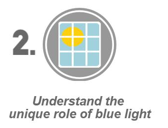 Unique Role of Blue Light in Circadian Rhythm