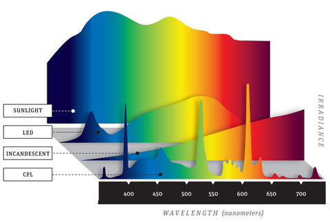 Colour Spectrum of Various Types of Light