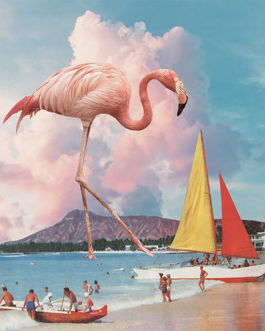 """Flamingo Playground"" by Karen Lynch [Framed Archival print]"