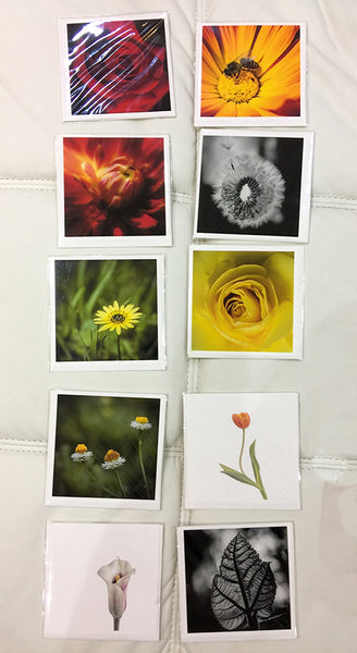 """Fine Art Cards"" (Single image/Card) by Adam Durst"
