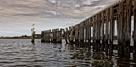 "#Sale Item ""Waiting"" (Goolwa, SA) by Adam Durst"