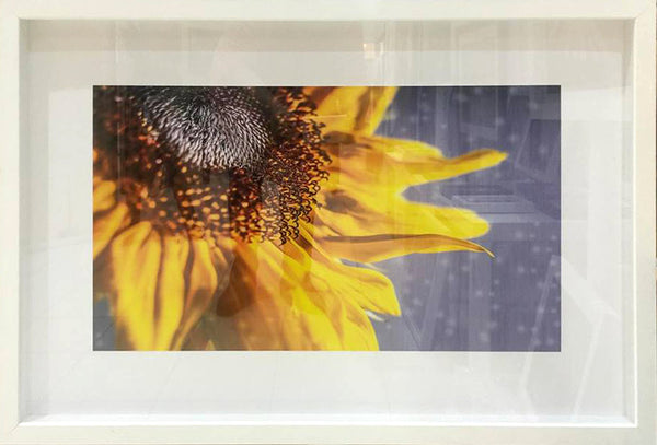 "#sold ""Sunny Days"" by Adam Durst"